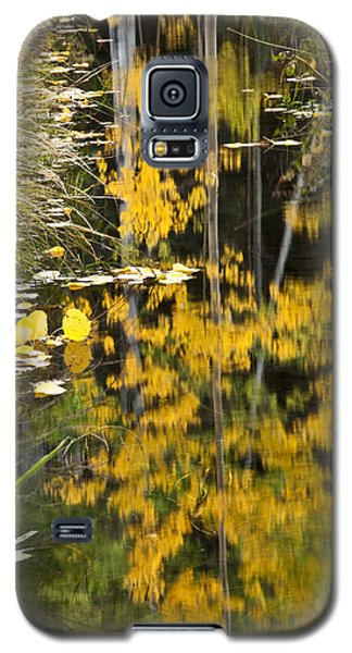 Galaxy S5 Case featuring the photograph Colorado Changing Five  by Eric Rundle