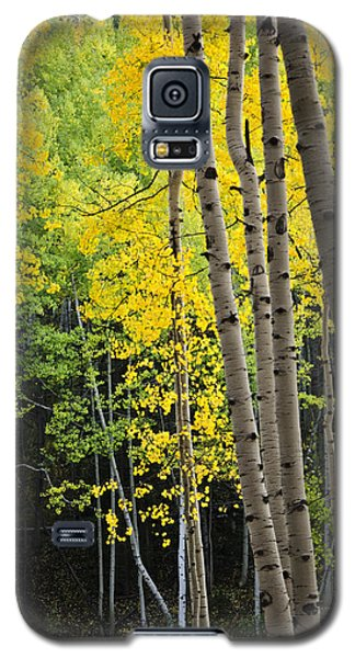 Galaxy S5 Case featuring the photograph Colorado Changing Two  by Eric Rundle