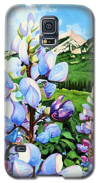 Colorado Summer Blues Close-up Galaxy S5 Case