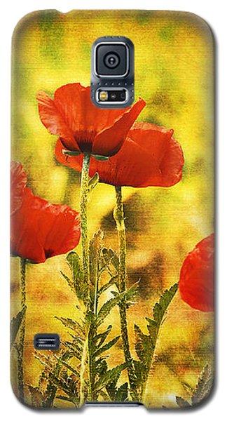 Colorado Poppies Galaxy S5 Case by Tammy Wetzel