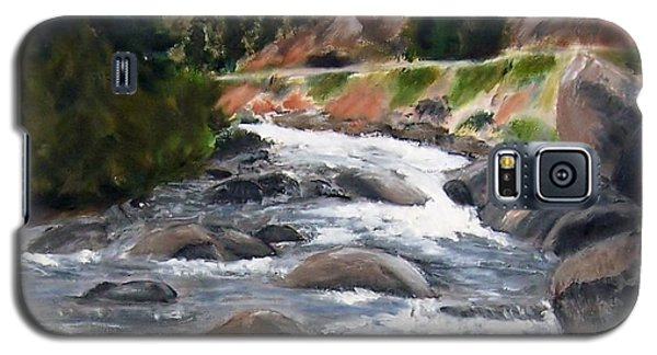 Galaxy S5 Case featuring the painting Colorado Rapids by Jamie Frier