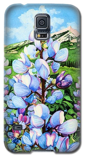 Colorado Summer Blues Galaxy S5 Case