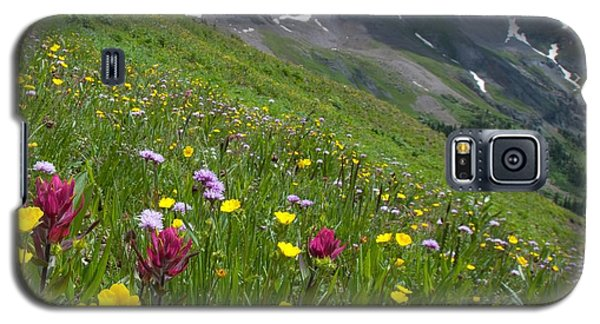 Colorado Wildflowers And Mountains Galaxy S5 Case