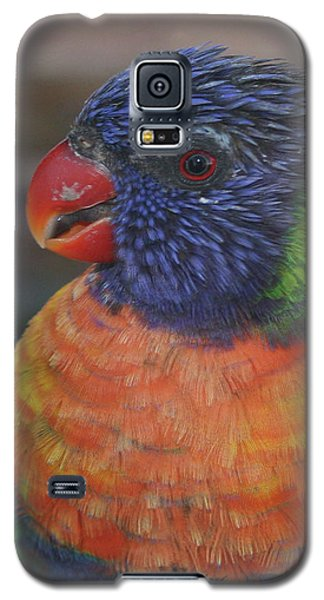Colored Feathers Galaxy S5 Case