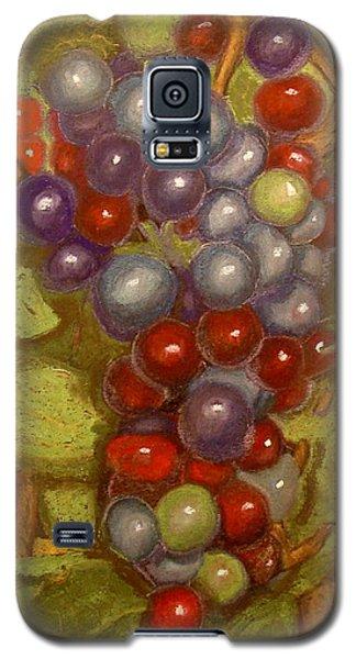 Colored Grapes Galaxy S5 Case by Joseph Hawkins
