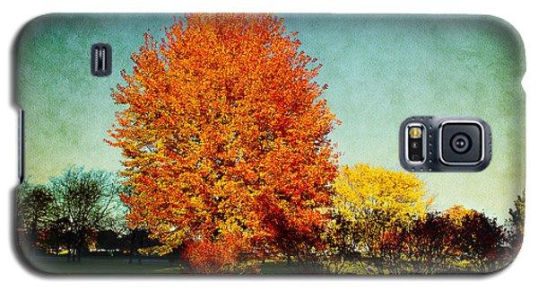 Colorful Autumn Galaxy S5 Case