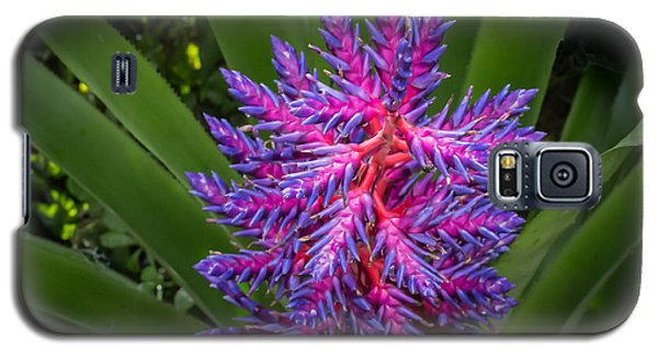 Colorful Bloom Galaxy S5 Case