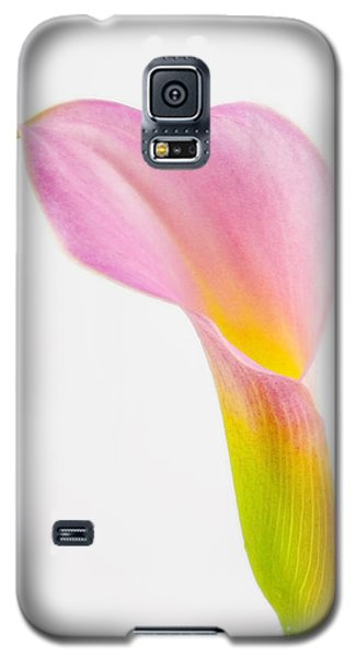Colorful Calla Lily Flower Galaxy S5 Case