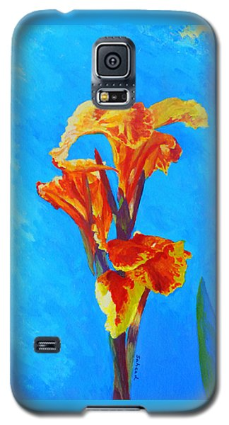 Colorful Canna Galaxy S5 Case