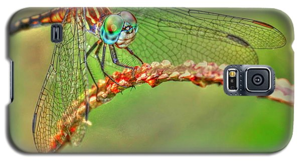 Colorful Dragonfly Galaxy S5 Case