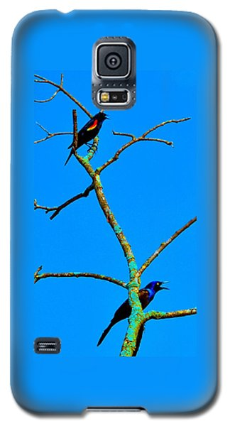Colorful Duet Galaxy S5 Case