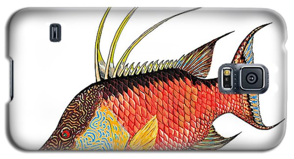 Colorful Hogfish Galaxy S5 Case