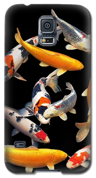 Colorful Japanese Koi Vertical Galaxy S5 Case