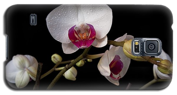 Colorful Moth Orchid Galaxy S5 Case