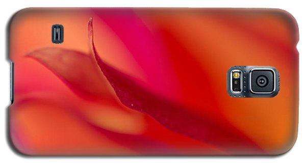 Colorful Motion Galaxy S5 Case