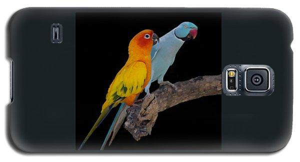 Sun Conure And Ring Neck Parakeet Galaxy S5 Case
