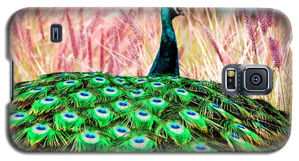 Galaxy S5 Case featuring the photograph Colorful Peacock by Matt Harang
