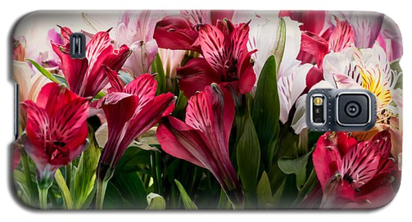 Colorful Peruvian Lillys Galaxy S5 Case