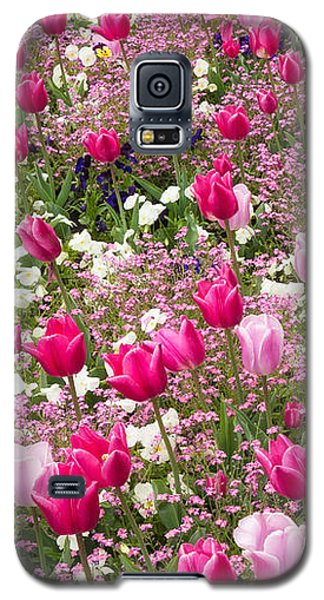 Colorful Pink Tulips And Other Flowers In Spring Galaxy S5 Case