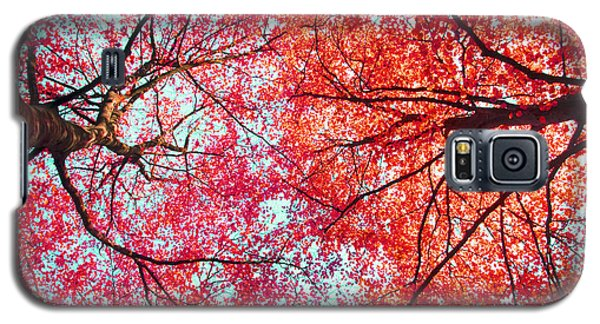 Galaxy S5 Case featuring the photograph Abstract Red Blue Nature Photography by Artecco Fine Art Photography