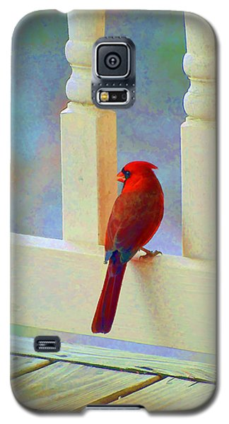 Galaxy S5 Case featuring the photograph Colorful Redbird by Kenny Francis