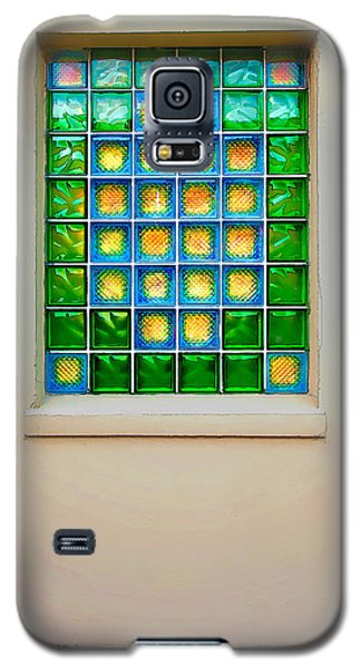 Colorful Savannah Window Galaxy S5 Case