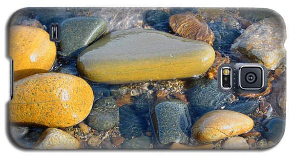 Colorful Shore Rocks Galaxy S5 Case by Mary Bedy
