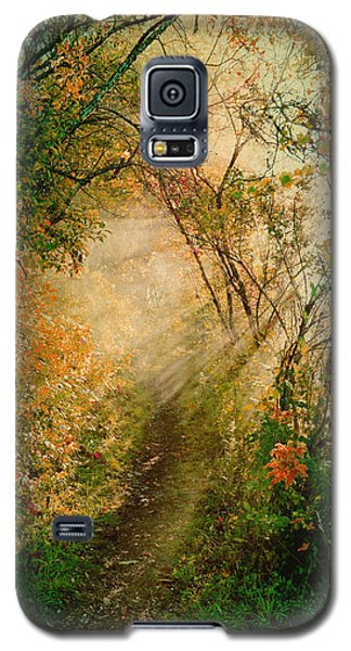 Colorful Sunlit Path Galaxy S5 Case by Brooke T Ryan