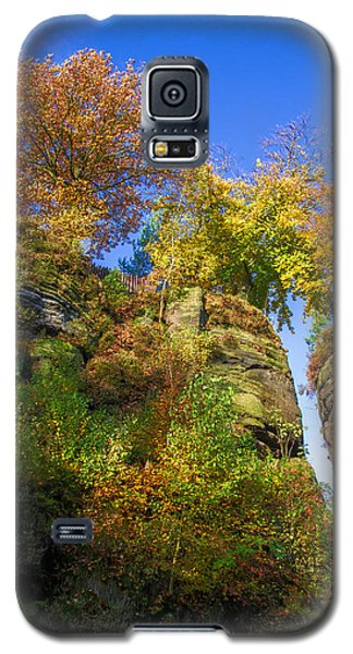 Colorful Trees In The Elbe Sandstone Mountains Galaxy S5 Case