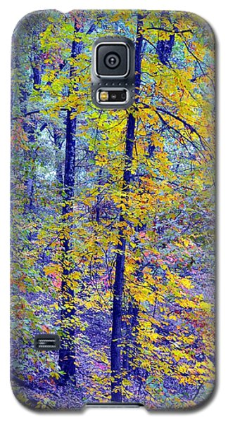 Colors Of Autumn Galaxy S5 Case