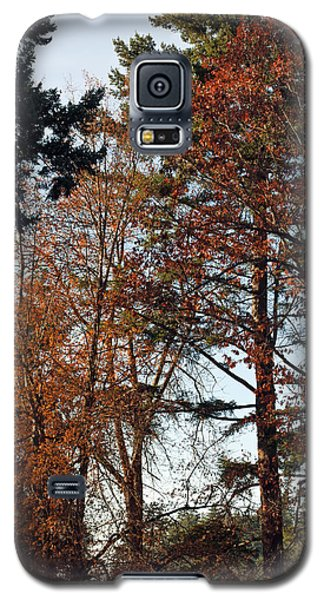 Galaxy S5 Case featuring the photograph Colors Of Autumn by Tikvah's Hope