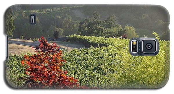 Colors Of Cali Galaxy S5 Case by Shawn Marlow