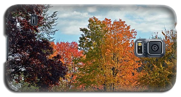 Galaxy S5 Case featuring the photograph Colors Of Fall by Judy Wolinsky