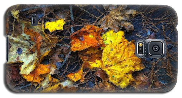 Galaxy S5 Case featuring the photograph Colors Of Fall by Ludwig Keck