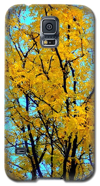Colors Of Fall - Smatter Galaxy S5 Case