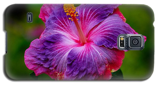 Galaxy S5 Case featuring the photograph Colors Of Paradise by Blair Wainman