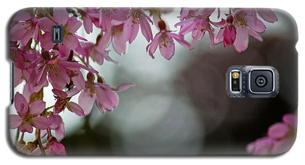 Galaxy S5 Case featuring the photograph Colors Of Spring - Cherry Blossoms by Jordan Blackstone