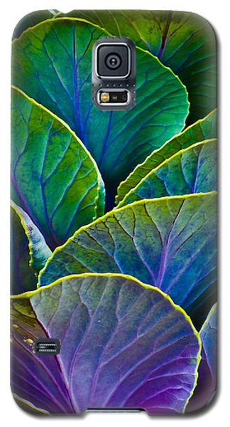 Colors Of The Cabbage Patch Galaxy S5 Case