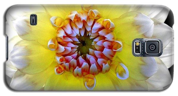 Colorwheel Galaxy S5 Case