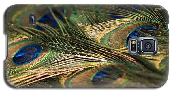 Colour And Design Galaxy S5 Case
