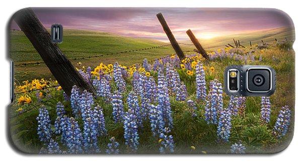 Columbia Hills Sunset Galaxy S5 Case