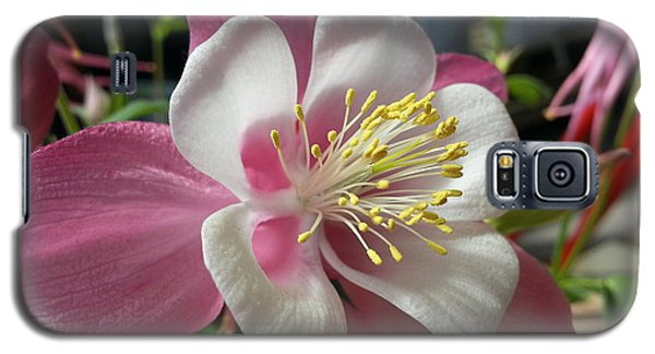 Galaxy S5 Case featuring the photograph Columbine by Caryl J Bohn