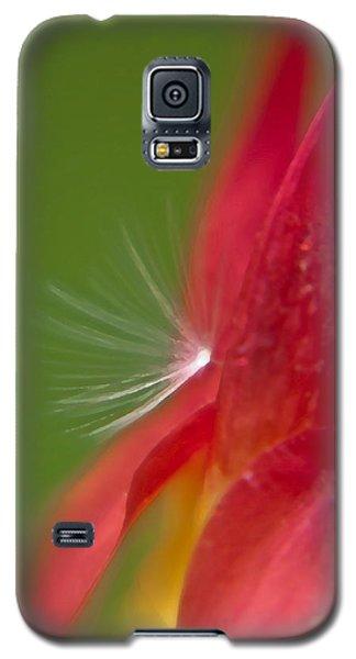 Columbine Fairy Galaxy S5 Case