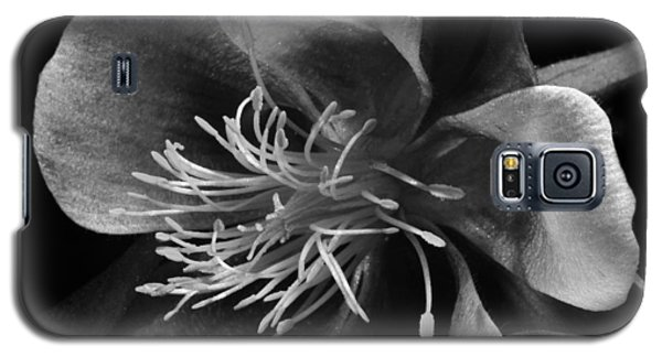 Columbine In Black And White Galaxy S5 Case by Karen Slagle