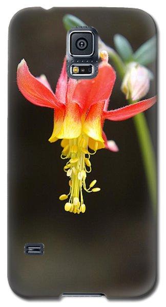 Columbine Galaxy S5 Case