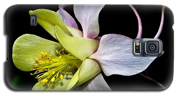 Galaxy S5 Case featuring the photograph Columbine by Jane McIlroy