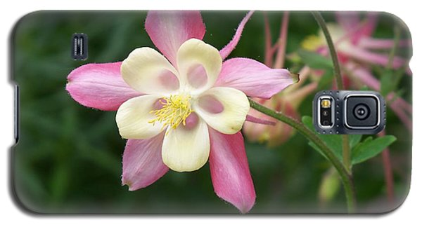 Galaxy S5 Case featuring the photograph Columbine by Kathryn Meyer