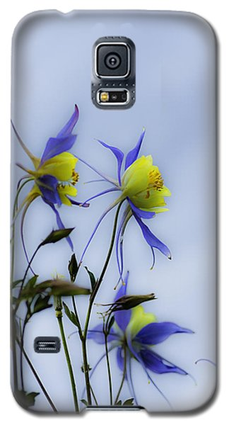 Galaxy S5 Case featuring the photograph Columbines by Peter v Quenter
