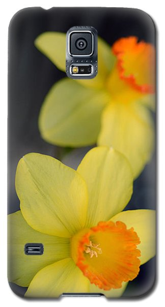 Galaxy S5 Case featuring the photograph Come Hear The Good News by Wanda Brandon