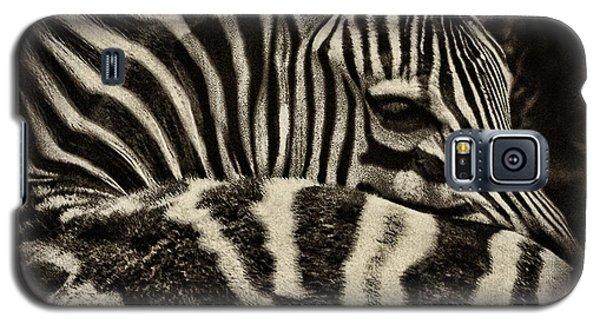 Comfort Galaxy S5 Case by Andrew Paranavitana